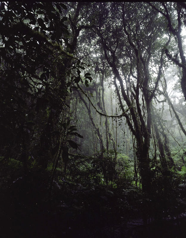 costarica22