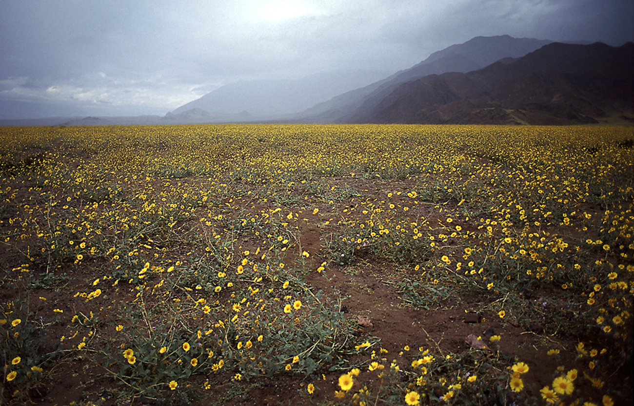 death_valley_2