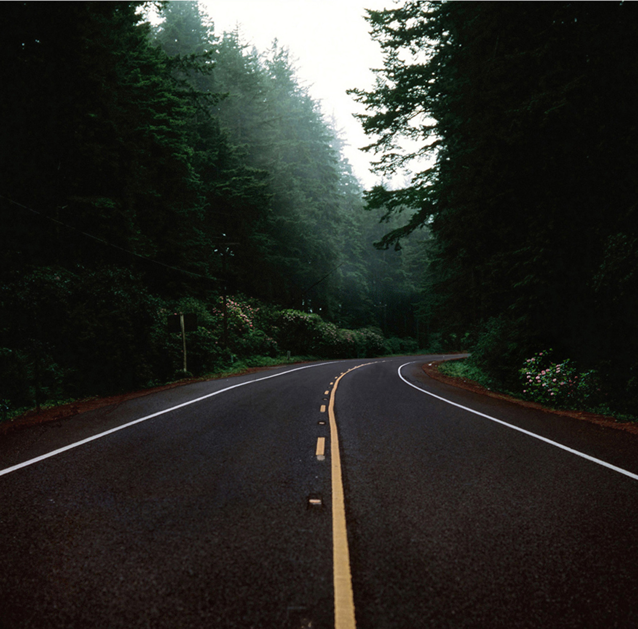 oregon_road