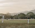 Cricket_001