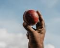 Cricket_003