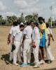 Cricket_007