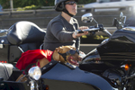 Brande and Luce ride the motorcycle in Seattle, WA on July 27, 2014