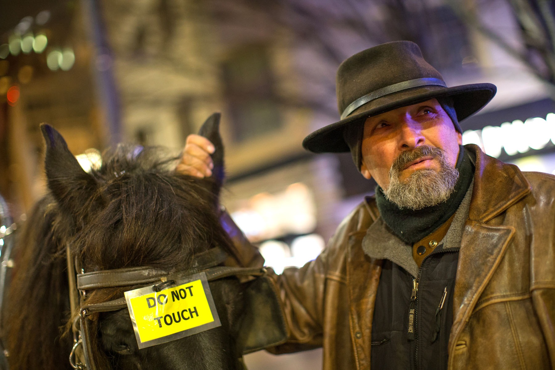 Steve Beckmann, owner and driver of Sealth Horse Carriages, rubs his draft horse, Amos', ears to calm him down during a break between taking passengers for rides in downtown Seattle, WA on December 17, 2017. (© Karen Ducey)