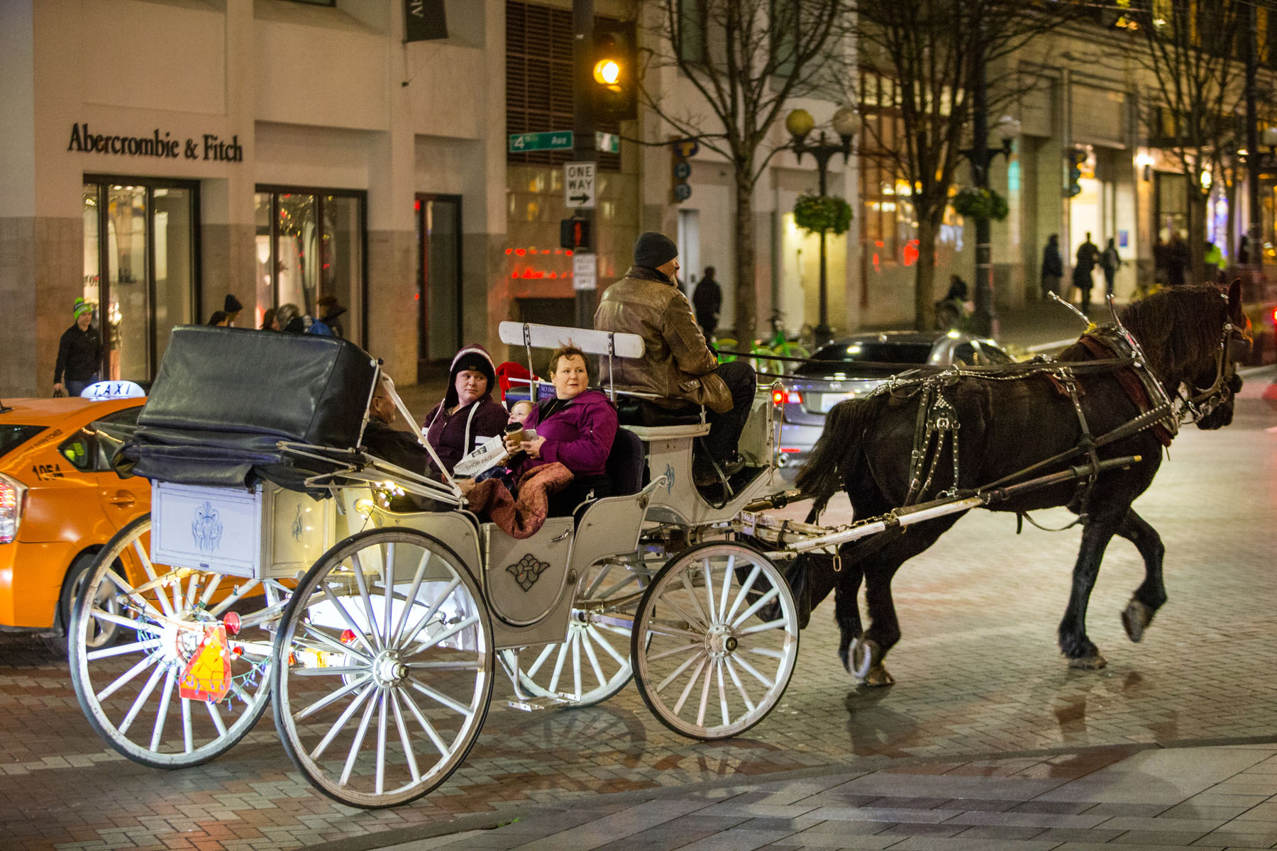 Steve Beckmann, Owner of Sealth Horse Carriages, and Amos, his 11 year-old Percheron draft horse, haul customers around Westlake Center in Seattle, WA on December 9, 2017. Beckmann says he was the first horse and carriage business in Seattle and now, 42 years later, he is the only one left. (© Karen Ducey) Story published on Crosscut.com and AnimalsNorthwest.com