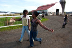 Estrella sisters Melody, 12, (left) and Ruth, 20, carry fresh cream towards the house to make butter at the Estrella Family Creamery in Montesano,Wash.  on November 4, 2010.  The Food and Drug Administration ordered the Estrella Family Creamery in Montesano,Wash.  to stop processing cheeses after it found listeria bacteria on some of the cheeses this year.  The family says they have made many renovations on the farm and the bacteria is only found on the soft cheese, not everything.  They believe they should be allowed to resume making cheese and sell the hard cheeses they have already made at the facility.  The creamery is one of Washington's most famous artisan cheesemakers.  (photo credit Karen Ducey)