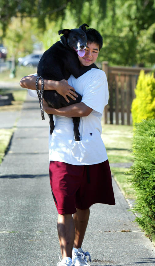 pets_lifestyle_ducey_walk