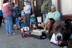 Over 50 pets and their owners wait in line on a sunny afternoon outside the Union Gospel Mission to be seen by veterinarians at the Doney Memorial Pet Clinic in Seattle on Saturday June 25, 2016. Every second and fourth Saturday people currently experiencing homelessness and low-incomes can bring in their pets for general wellness exams  and pick up pet food and supplies. (photo © Karen Ducey Photography)Homeless and low income people bring in their pets to see veterinarians and pick up food at the Doney Memorial Pet Clinic located in the Union Gospel Mission in Seattle, WA on June 25, 2016. (photo © Karen Ducey Photography)