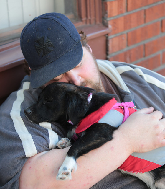 """Gizmo sleeps peacefully in the arms of Michael Rocker from Bellevue, Wash. as they wait in line to see a veterinarian at the Doney Memorial Pet Clinic in Seattle on June 25, 2016. Rocker says he brings her here {quote}to get pampered for the day.{quote} Rocker who is currently living with a friend says, """"I don't have much but if I can come here and get her spoiled, why not? She's not my service dog, she's my angel.""""  (photo © Karen Ducey Photography)Homeless and low income people bring in their pets to see veterinarians and pick up food at the Doney Memorial Pet Clinic located in the Union Gospel Mission in Seattle, WA on June 25, 2016. (photo © Karen Ducey Photography)"""