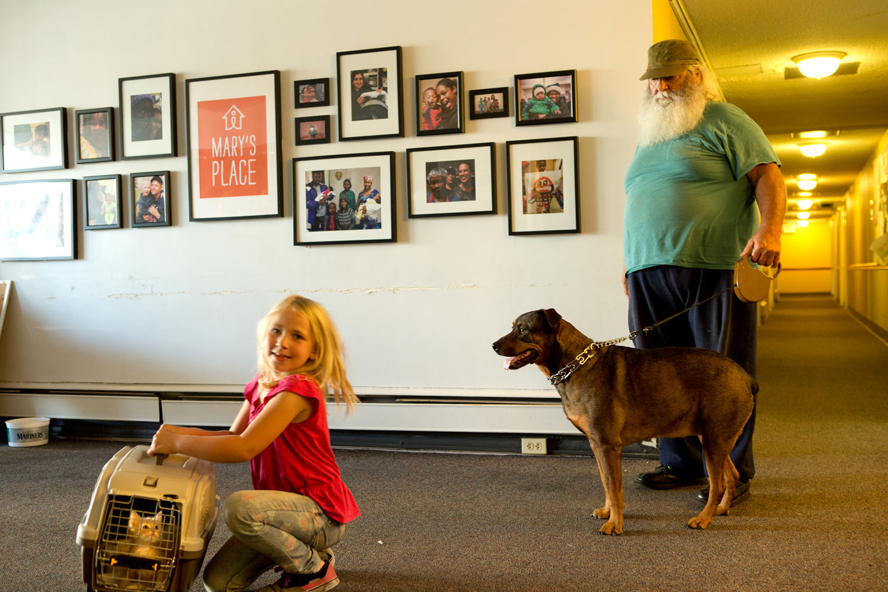 Krystallynn Delp, 7, cares for Curious George, an eight week old kitten with her grandfather, Bob Delp and his dog Momma at Mary's Place Guest Rooms in South Lake Union in Seattle, Wash. on June 23, 2016. Mary's Place Guest Rooms provide transitional housing for families including those with pets. The family had previously been sleeping in their van and say they wouldn't have gone to a shelter if they weren't allowed to bring their pets. (photo © Karen Ducey Photography) Story published on Crosscut.com and AnimalsNorthwest.com