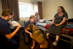 Dr. Cherri Trusheim (center) veterinarian and owner of Urban Animal, and her staff vet techs, Janna O'Connor (left)band Rob Oatman (right) check on Momma, a seven year old rottweiler-shepherd mix belonging to Mary Delp (seated) at Mary's Place new Guest Rooms crisis response shelter in South Lake Union in Seattle, WA on June 23, 2016. The vets provided check ups and medical care to homeless dogs and cats living at the shelter. (photo © Karen Ducey Photography)