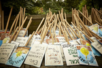 140921_nwi_climatemarch_1stselects_0009