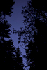 Winlaw-night-sky-1