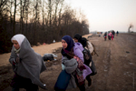 Syrian refugee crossing the boder at dawn to Presevo ,on  Serbia Macedonia border