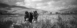 Israeli Soldiers walking on Palestinian farmland during a military exercise.