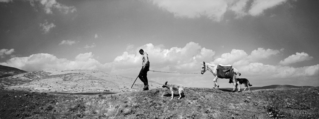 A Palestinian shepherd walking on a hill, which the army created in order to prevent the Palestinians from passing to Area C.