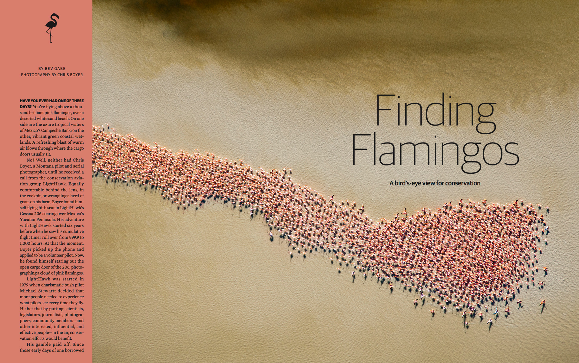 {quote}Finding Flamingos{quote} AOPA Magazine, March 2013
