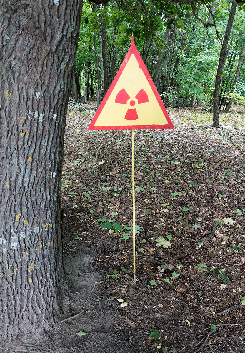 Many pockets of high level radioactivity remain all over Chernobyl exclusion zone. Some are marked as can be seen here but most are not. The most dangerous elements include caesium and strontium which are present in the soil. Scientists were expecting a reduction in radioactivity that mysteriously has not happened yet. Some of the less common particles like plutonium may remain active for many thousands of years.
