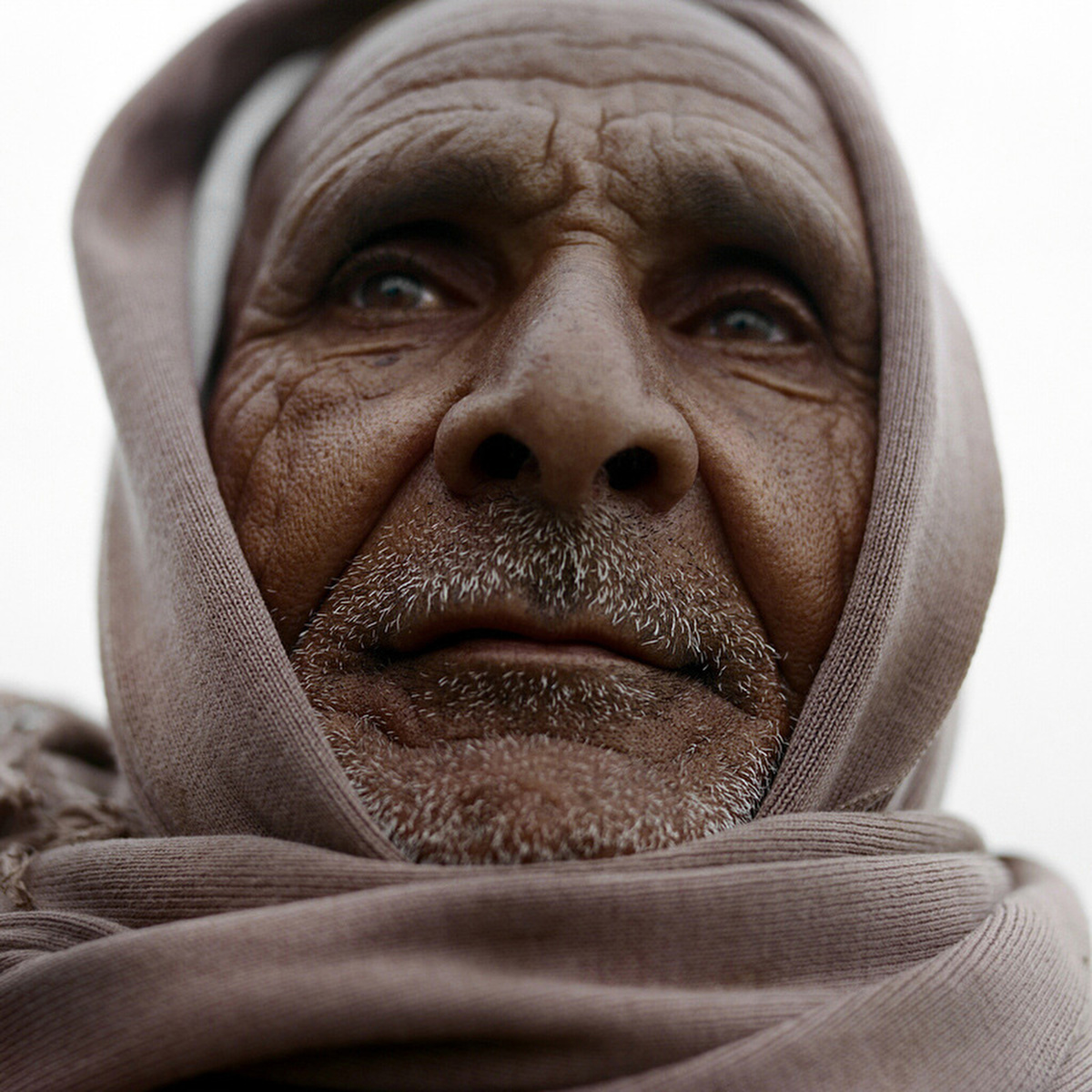Hassan Mohamed al-Sae'edy, 60, is a father of six. Farming is his only means for supporting his family: {quote}A farmer is a farmer,{quote} he said. {quote}I can't read or write, so how can I hold a pen and try to write?{quote}