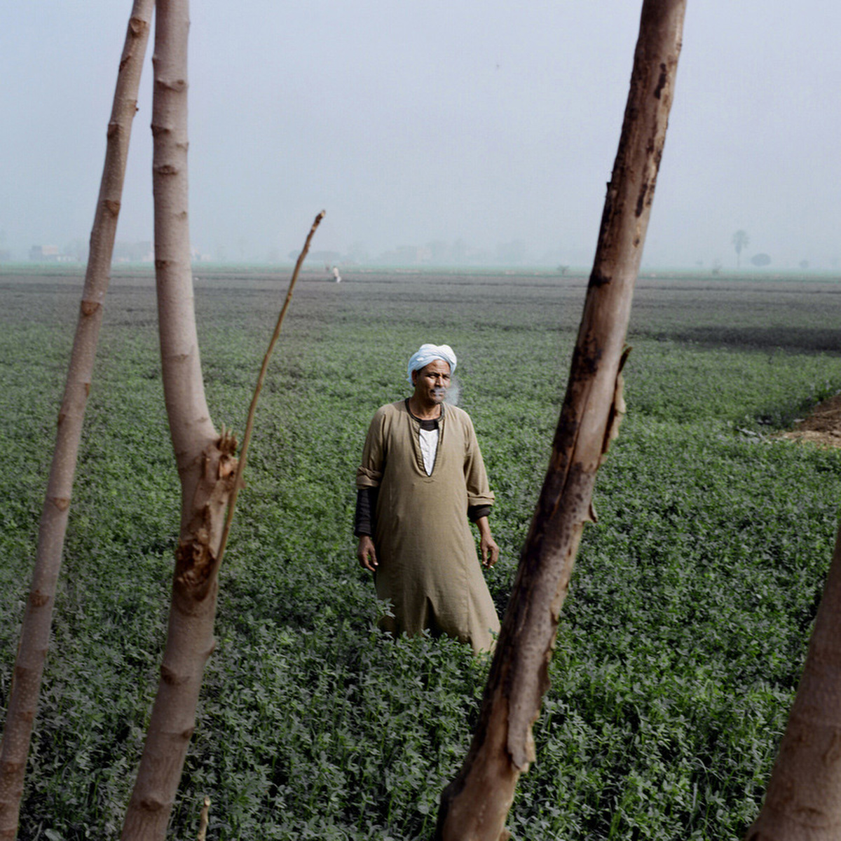 A farmer poses for a portrait on a land where he works.