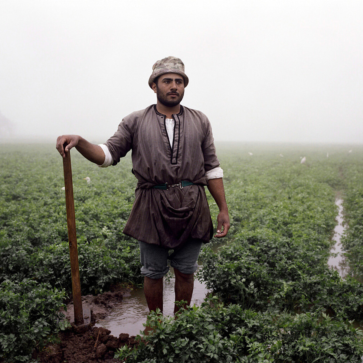 Mohamed, 25, is one of the youngest farmers working along these fields. He rents the land and makes a cut from the profit.