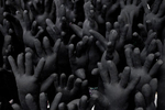 hands_0372