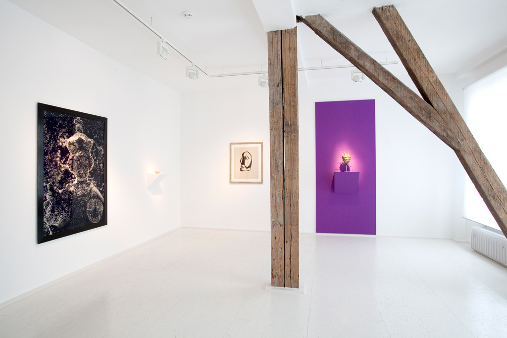 Andres Serrano, Islamic oil lamp from the 7th century, Karl Schmidt-Rottluff, Damien Hirst