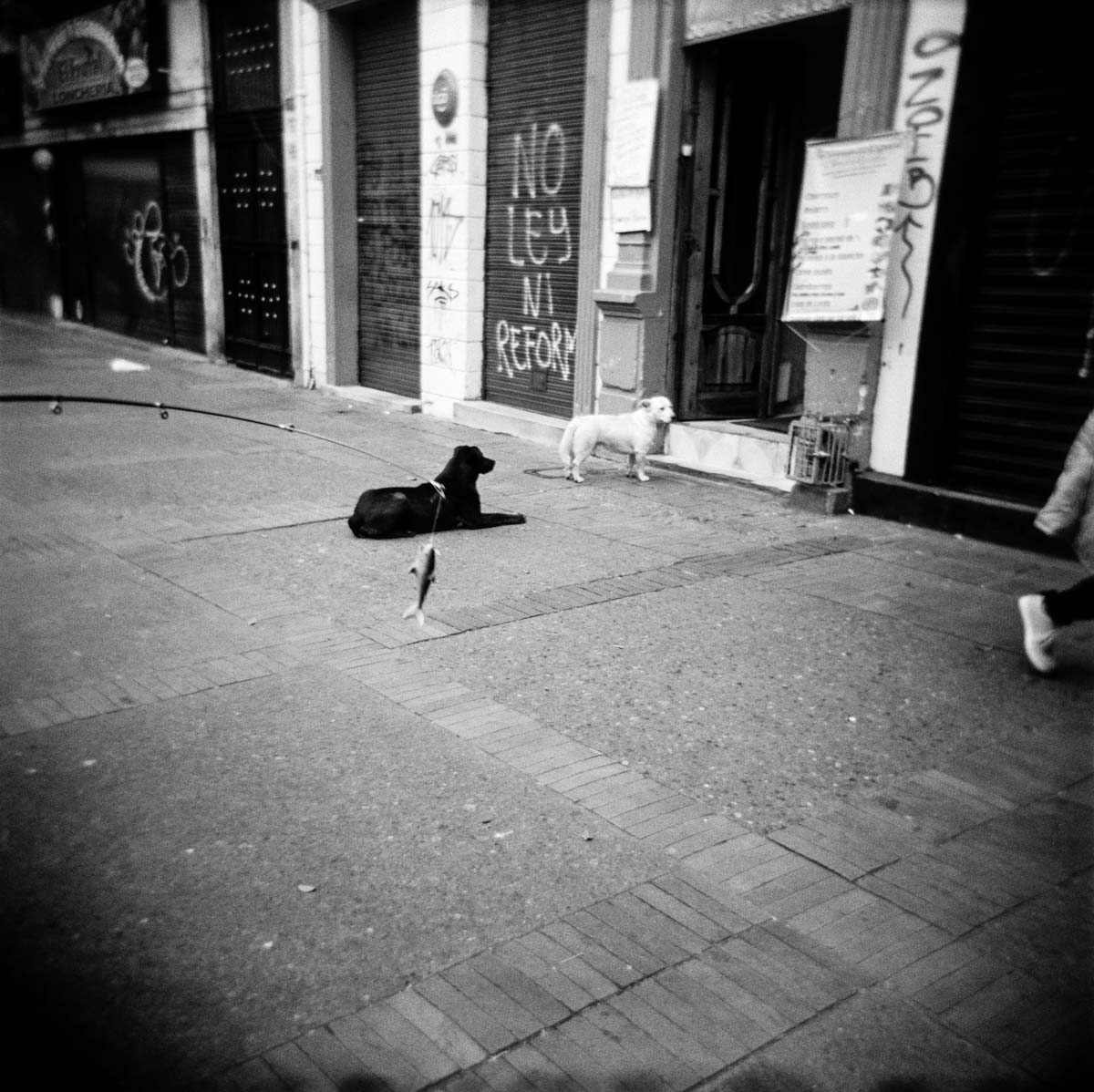 Gloomy_Bogota_07