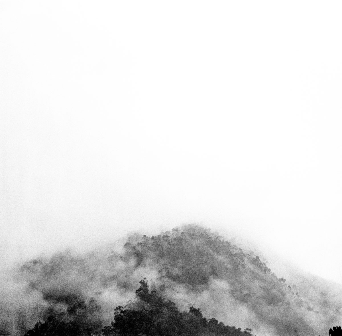 Gloomy_Bogota_22