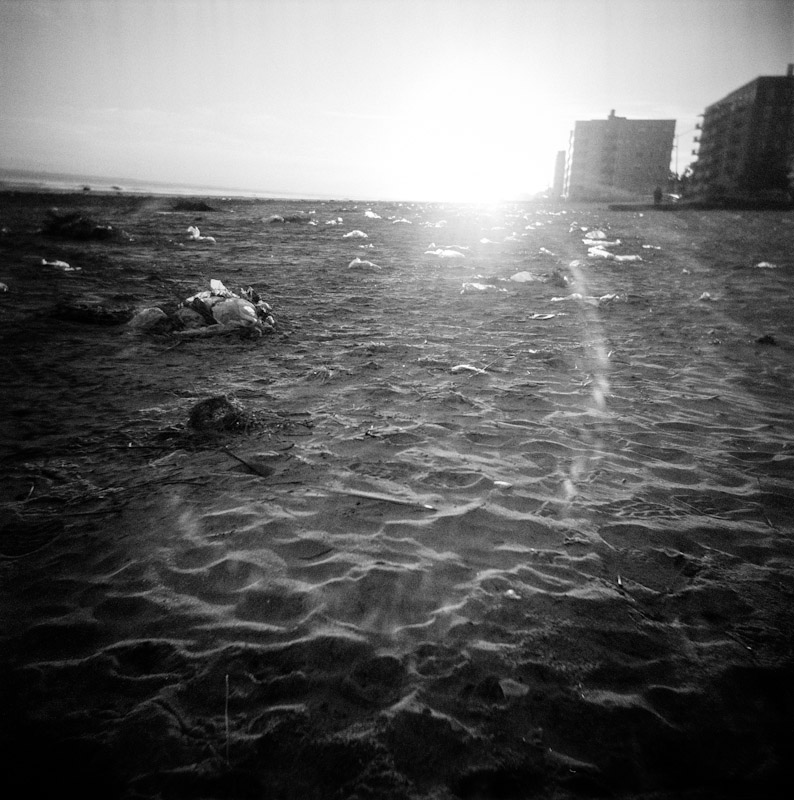 Sandy_18