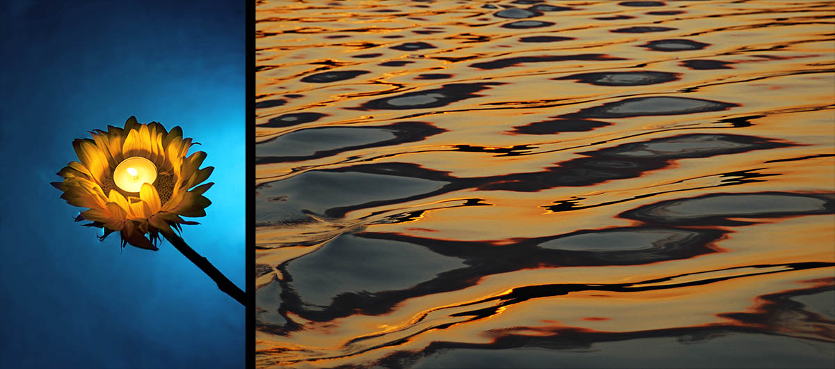 (left) A Sunflower floats peacefully on top of a blue lit pool in Lake Forest, Calif., on Saturday, Sept. 25, 2010. (right) A sunset lit lake creates waves and color patterns from a passing pontoon, {quote}The Jackie{quote} on July 26, 2006 at Kelly Lake in Suring, Wisc.