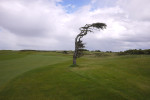 August 24 - Galway Bay Golf Club, Galway, IrelandPost a Comment
