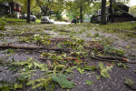 August 28 - Hurricane Irene Damage, Huntington, NYPost a Comment