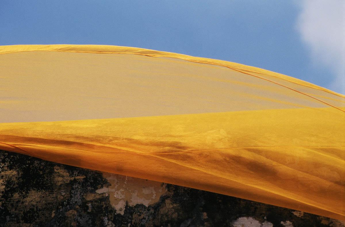 Saffron, Ayutthaya, Thailand