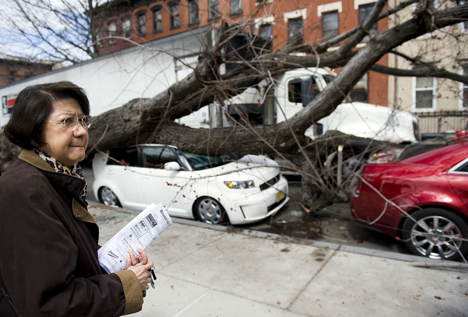 A tractor trailer carrying organic foods to a city co-op this afternoon clipped the limb of a tree on Ninth Street near Hamilton Park, ripping the tree out of the ground and sending it crashing on two parked cars. Luz Crisostomo, the driver of the white Scion, says she was praying at St. Michael's Church of St. Jude nearby when the tree fell on the car. (Reena Rose Sibayan | The Jersey Journal)