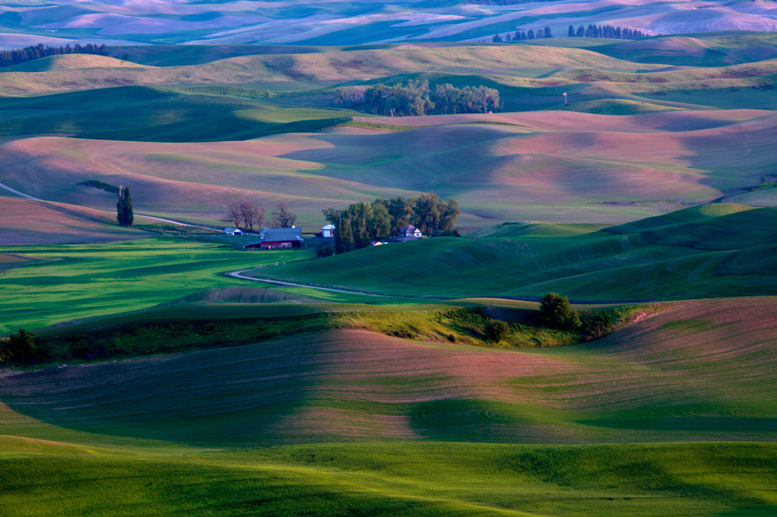 the_palouse13