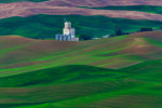 the_palouse16