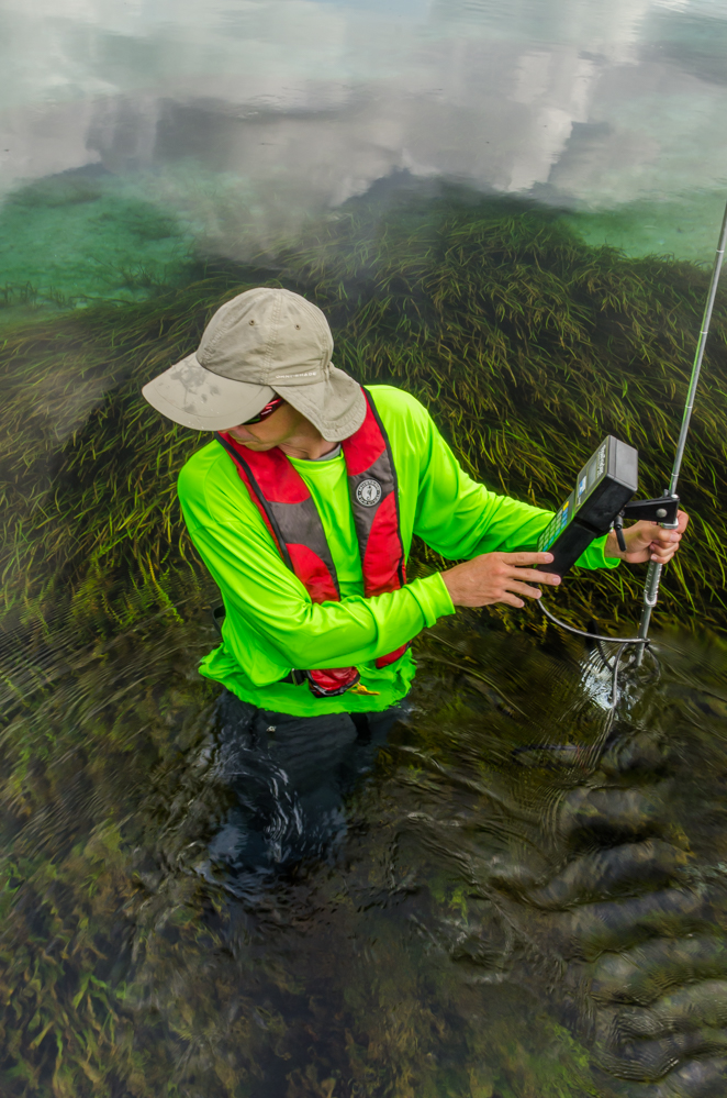 Biological monitoring of the Rainbow River, Florida, river bed for plant species growth patterns helps predict the future health of the river.