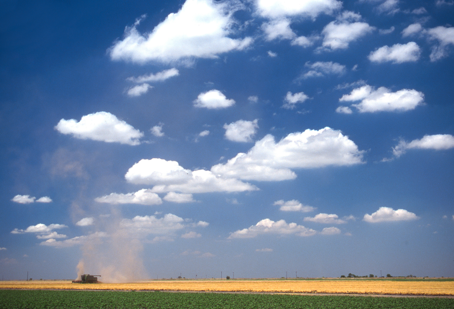 Wheat dust rises from a combine making its way across a wheat field in north central Kansas.