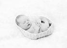 newborn-baby-boy185461