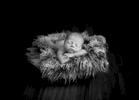 newborn-baby-boy185525