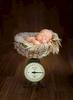 newborn-baby-boy185527