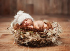 newbornphotography1