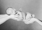 top-newborn-photographer185622