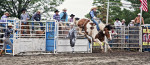 rodeo_panarama_by_frankvero