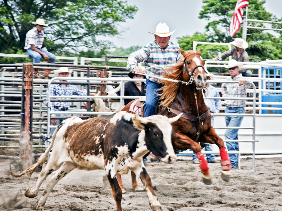 rodeo_single3_by_frankveron