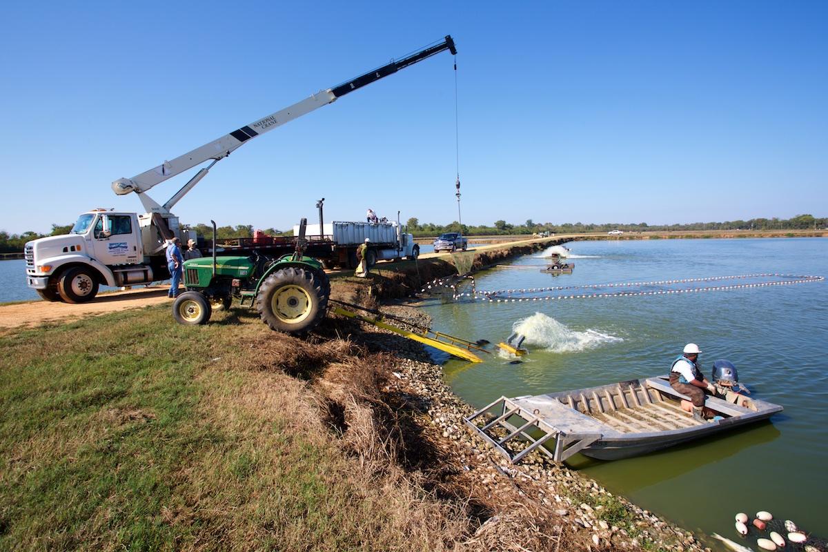 B_Groark_Alabama_Catfish_Farming-2