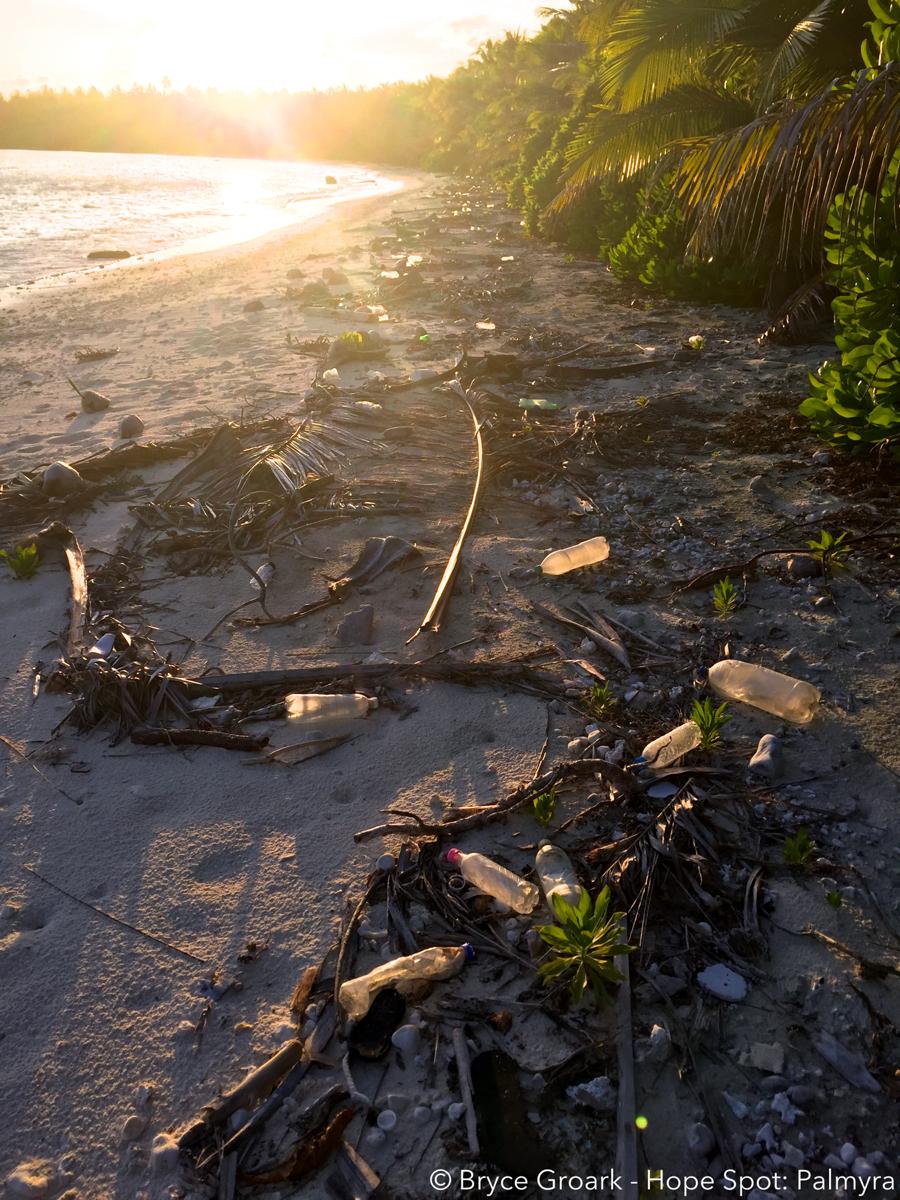 Plastic Pollution at Palmyra Atoll