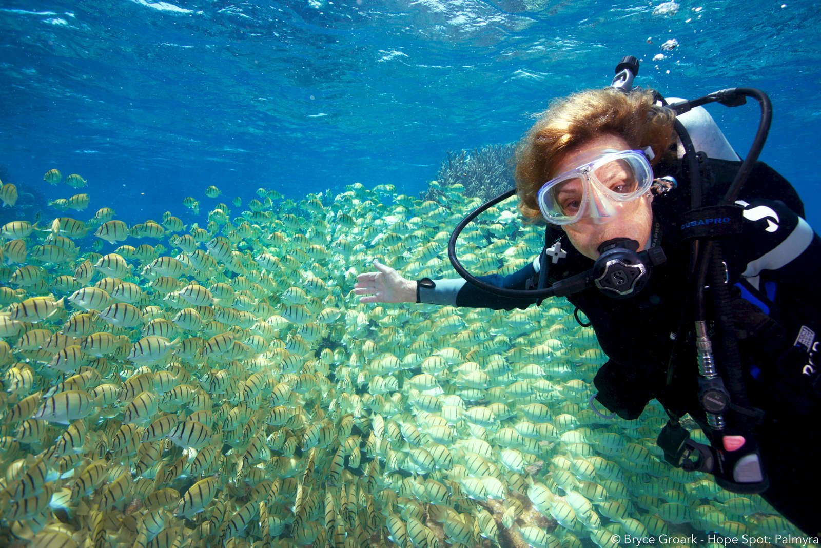 Dr Sylvia Earle at Palmyra Atoll