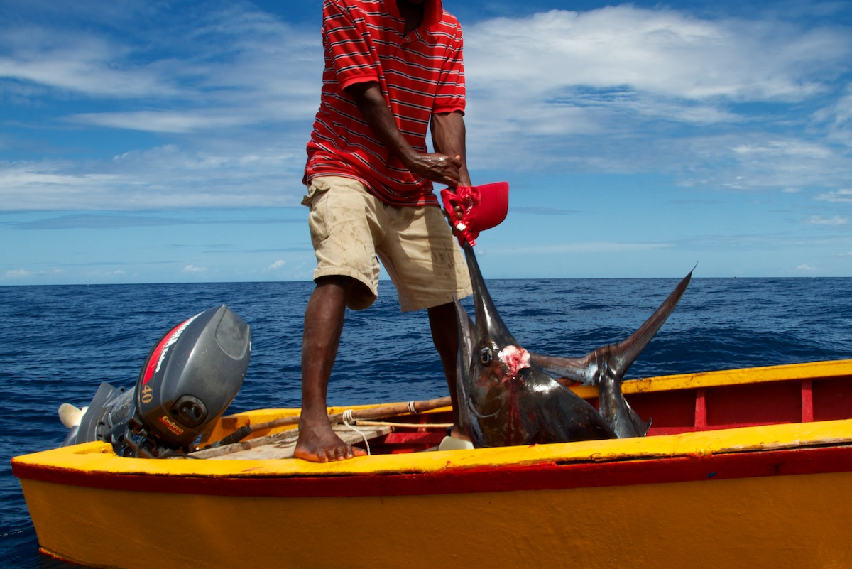 Local Fisherman in Dominica